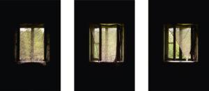 Studien_Fenster